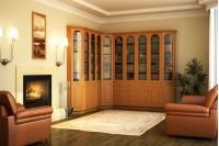 Книжный шкаф для кабинета